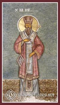 Свети Јосиф Нови, митрополит Темишварски