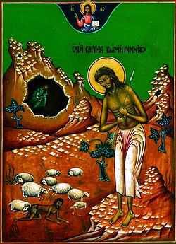 Свети преподобни Варвар мироточиви