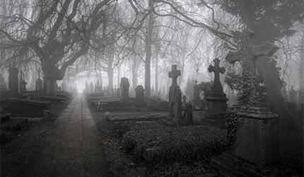 Ако замислиш да ћеш сутра умрети...